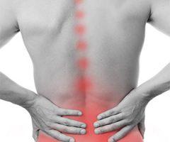 Back Exercises – Level 1